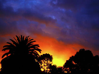 Photograph - Tropic Fire by Mark Blauhoefer