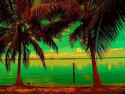 Photograph - Tropic Nite by Florene Welebny