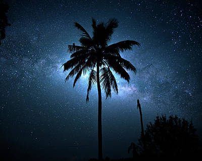 Photograph - Tropic Of Milky Way by Mark Andrew Thomas