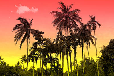 Tropical 9 Art Print by Mark Ashkenazi