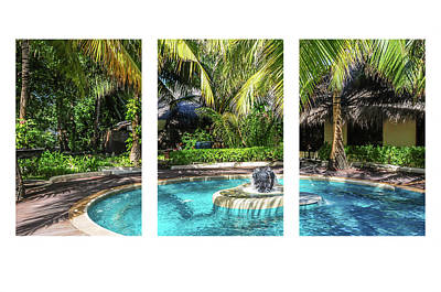 Photograph - Tropical Ambiance Triptych by Jenny Rainbow