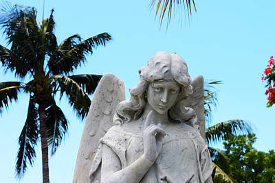 Photograph - Tropical Angel With Tear by Susan Vineyard