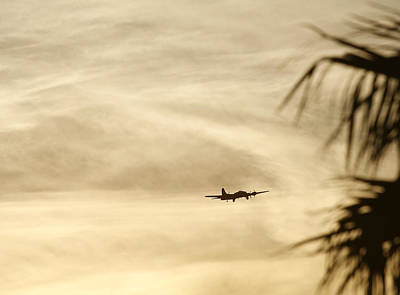 Photograph - Tropical B-17 Flying Fortress by John Clark