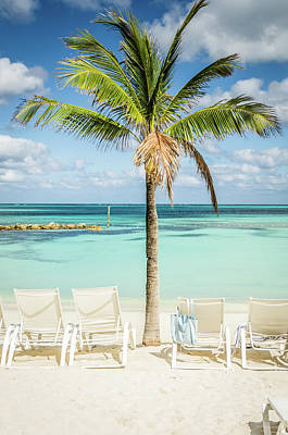 Photograph - Tropical Bahamas Beach by Anthony Doudt