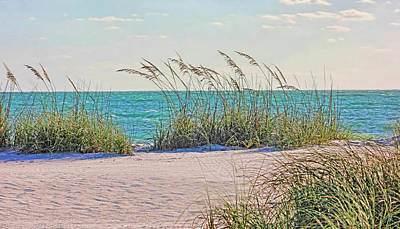 Photograph - Tropical Beach And Sea Oats by HH Photography of Florida