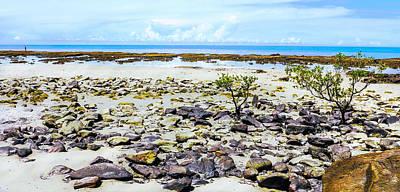 Photograph - Tropical Beach - Cape Tribulation - Far North Queensland, Australia by Lexa Harpell