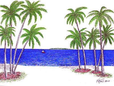 Drawing - Tropical Beach by Frederic Kohli
