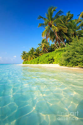 Getty Photograph - Tropical Beach - Maldives by Matteo Colombo