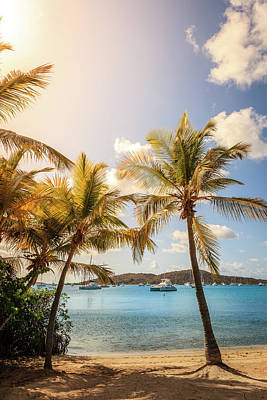 Photograph - Tropical Beach Scene by Alexey Stiop
