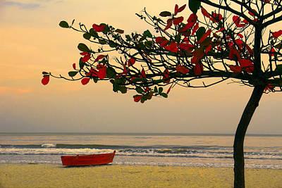 Art Print featuring the photograph Tropical Beach Sunset by Kim Wilson