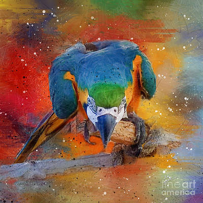Photograph - Tropical Blue And Yellow Macaw 2 by TK Goforth