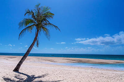 Photograph - Tropical Blue Skies And White Sand Beaches by James BO Insogna