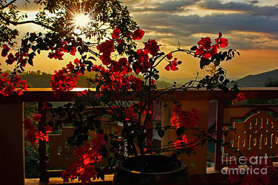 Tropical Bougainvillea Sunset By Kaye Menner Art Print by Kaye Menner