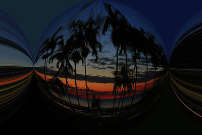 Photograph - Tropical Bubble by Fran West