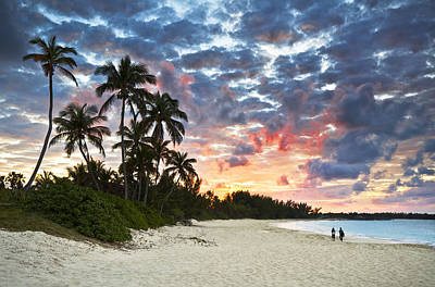 Tropical Caribbean White Sand Beach Paradise At Sunset Art Print by Dave Allen