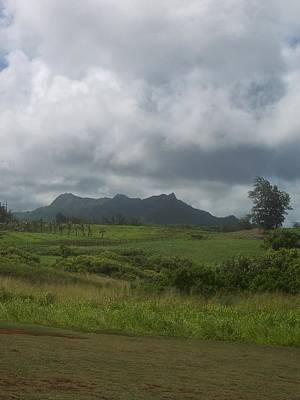 Photograph - Tropical Countryside by Michelle Miron-Rebbe