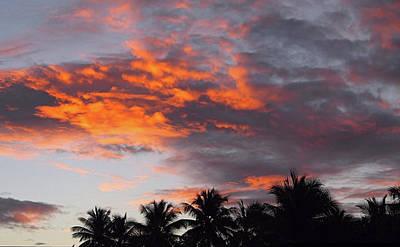 Photograph - Tropical Dawn I I I by Newwwman