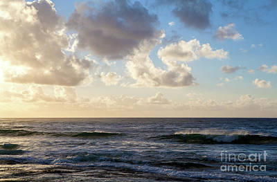Photograph - Tropical Dawn by Roselynne Broussard
