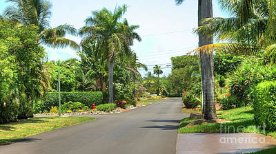 Photograph - Tropical Feel Residential Street by Ules Barnwell
