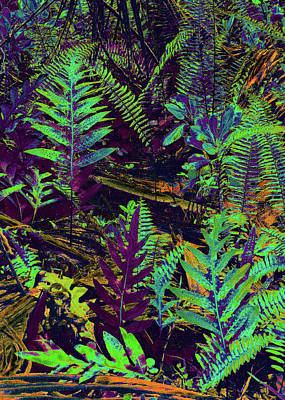 Digital Art - Tropical Ferns by Kerri Ligatich