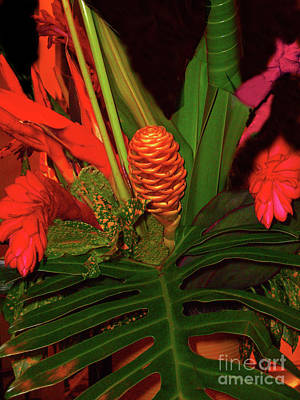Photograph - Tropical Floral Display by Merton Allen