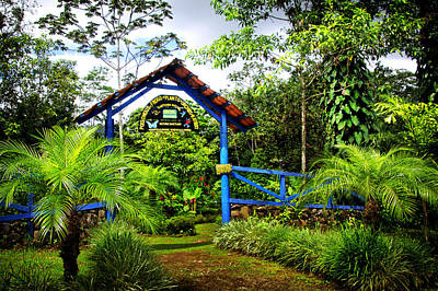 Photograph - Tropical Garden Entrance by Carolyn Derstine