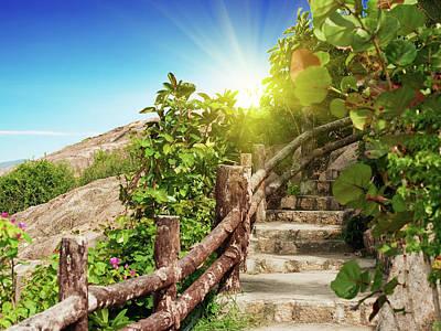 Tropical Garden Art Print by MotHaiBaPhoto Prints