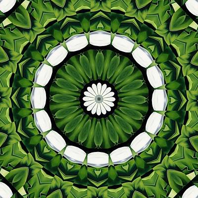 Digital Art - Tropical Green And White Floral Mandala by Tracey Harrington-Simpson