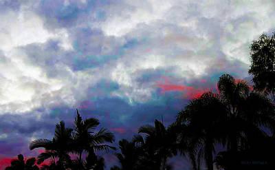 Photograph - Tropical Hue by Susan Vineyard