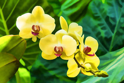 Vivid Colour Painting - Tropical Impressions - Golden Yellow Orchids by Georgia Mizuleva