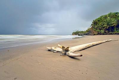 Photograph - Tropical Island by Nadia Sanowar
