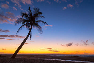 Photograph - Tropical Island Sunrise by James BO Insogna