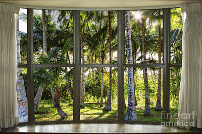 Photograph - Tropical Jungle Reflections Bay Window View by James BO Insogna