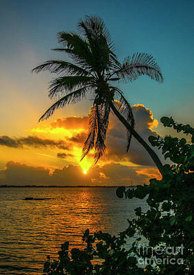 Photograph - Tropical Lagoon Sunrise by Tom Claud