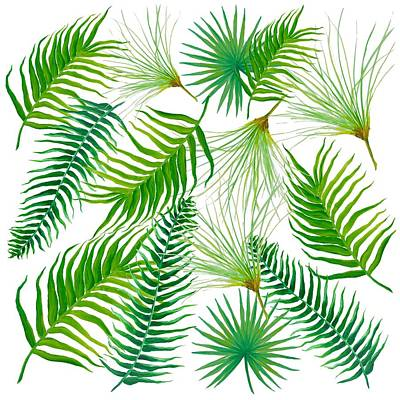 Papyrus Painting - Tropical Leaves And Ferns by Jan Matson