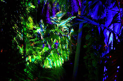 Photograph - Into The Psychedelic Jungle by Richard Ortolano