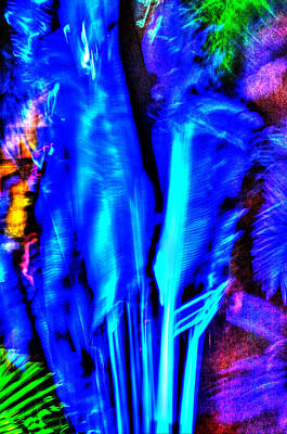 Photograph - Tropical Lightshow  by Richard Ortolano