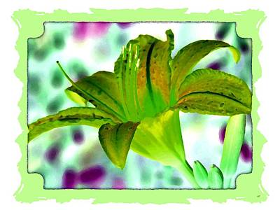 Digital Art - Tropical Lily 1 by Will Borden