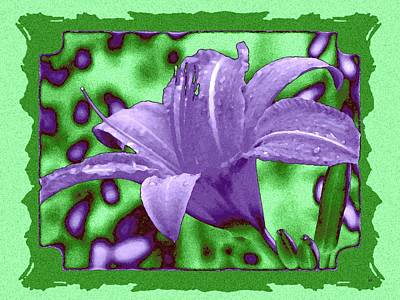 Digital Art - Tropical Lily 4 by Will Borden