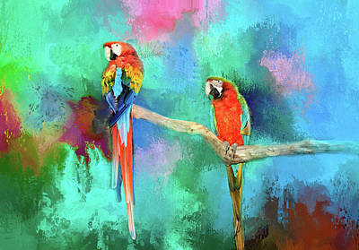 Photograph - Tropical Macaws by Lynn Bauer