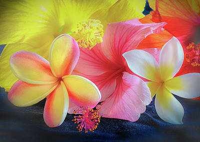 Photograph - Tropical Melange by Jade Moon