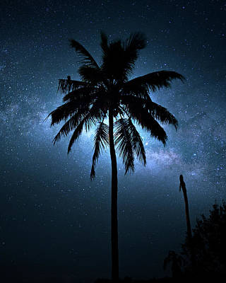 Photograph - Tropical Milky Way by Mark Andrew Thomas