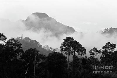 Photograph - Tropical Mist - Thailand by Craig Lovell