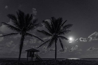 Photograph - Tropical Moon Delray Beach Florida by Lawrence S Richardson Jr