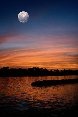 Photograph - Tropical Moon by Laura Fasulo