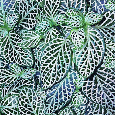 Digital Art - Tropical Nerve Mosaic Plant Fittonia Leaves by Menega Sabidussi