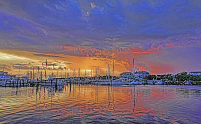 Photograph - Tropical Nights by HH Photography of Florida