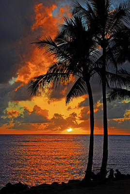Photograph - Tropical Nights  by Lynn Bauer