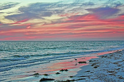Photograph - Tropical Nights On The Florida Gulf Coast by HH Photography of Florida