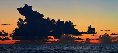 Photograph - Tropical Panoramic A by David Lee Thompson